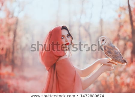 Beautiful girl in the hood in autumn Stock photo © Alones