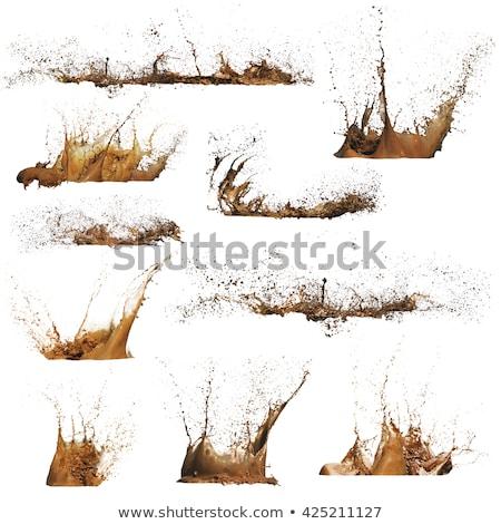 Mud splash Stock photo © raywoo