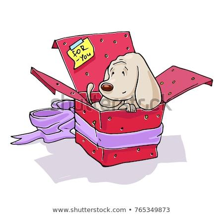 女の子 · 白 · 子犬 · ギフトボックス · 家族 · 少女 - ストックフォト © ElenaBatkova
