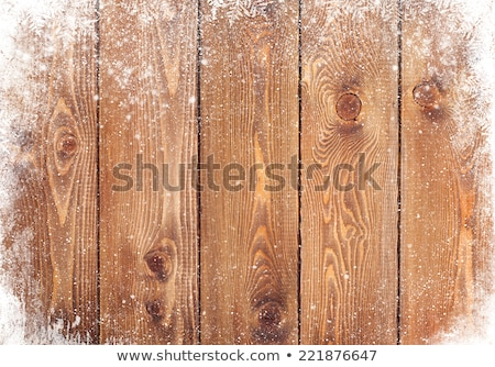 winter wood in snow Stock photo © basel101658