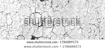 crumbling wall Stock photo © sirylok