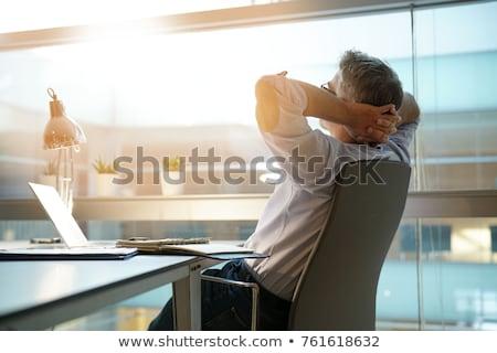 小さな · ビジネスマン · ノートパソコン · 瞑想 · 蓮 · ポーズ - ストックフォト © joseph73