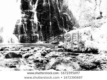 Mountain brook black and white dramatic landscape. Stock photo © borysshevchuk