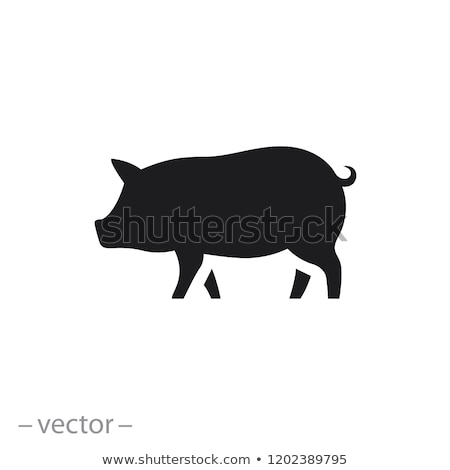 Icon pig Stock photo © zzve