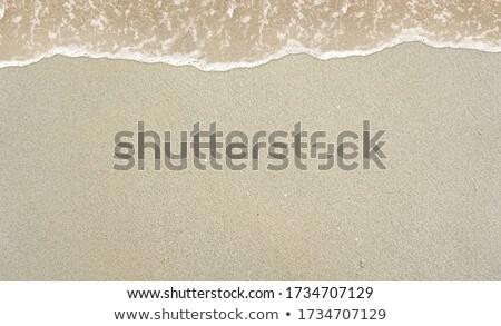 sár · textúra · nedves · barna · föld · természetes - stock fotó © meinzahn