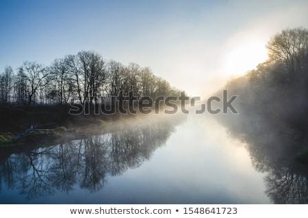 Rano mgły rzeki lata krajobraz Ukraina Zdjęcia stock © Kotenko