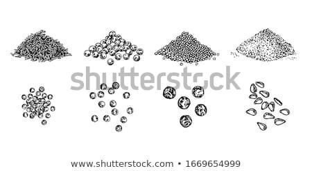 Kömény magok fehér csoport egészséges fűszer Stock fotó © Digifoodstock