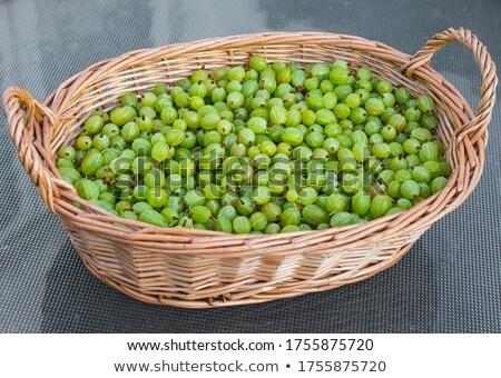 Green gooseberry in summertime Stock photo © digoarpi