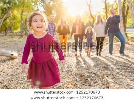 genç · aile · arkasında · iş · kadın · kız - stok fotoğraf © feverpitch