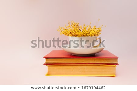 Old colorful vintage books Stock photo © boggy