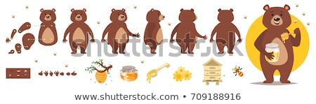 Vector Set Of Bear Foto d'archivio © curiosity