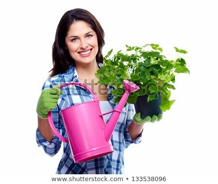 Gardening woman with plant. Isolated on white background. Stock photo © Lopolo