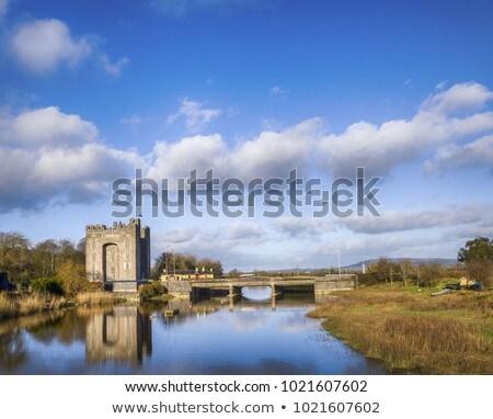 Bunratty Castle, Ireland Stock photo © borisb17