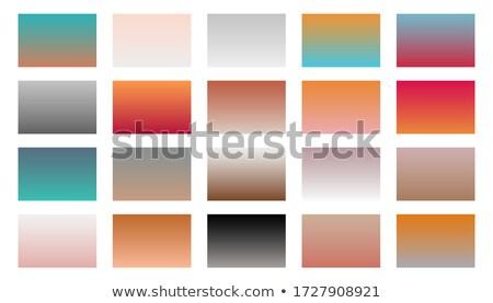 Set Gradienten Kombination Design Web Stock foto © SArts