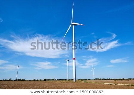 Wind Energie unfruchtbar Bereich Landschaft grünen Stock foto © elxeneize