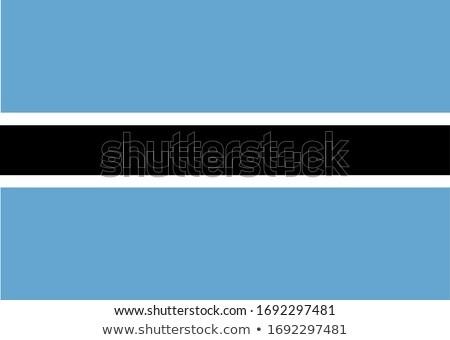 Botswana banderą biały farby sztuki podpisania Zdjęcia stock © butenkow
