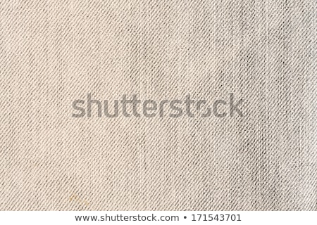 Demin Fabric Texture Foto stock © homydesign