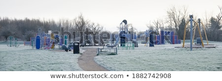 frozen grass stock photo © hraska