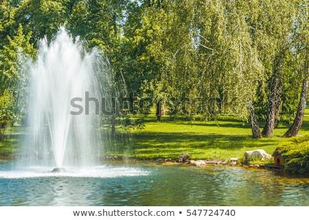 lake with  fountain Stock photo © taden