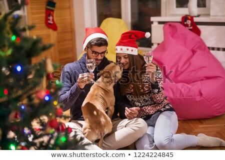 Szczęśliwy para domowych psa pitnej szampana Zdjęcia stock © wavebreak_media