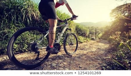 Ciclista campagna illustrazione sport ragazzo gara Foto d'archivio © adrenalina