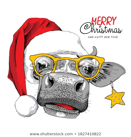 Funny Merry Christmas, Happy New Year season graphic prints set, t shirt designs for xmas party deco Stock photo © JeksonGraphics