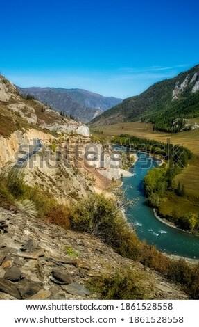 Cachoeira rio sibéria Rússia árvore Foto stock © olira