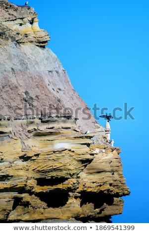 Birdwatcher on a coastal viewpoint Stock photo © wildnerdpix