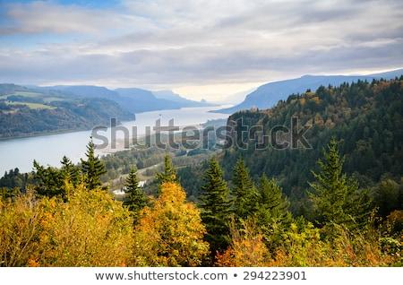Dramatic Mountain Cascade Stock photo © wildnerdpix