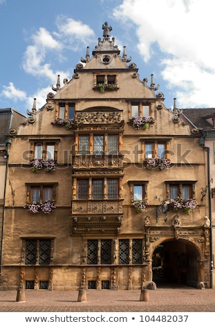 Maison des Tetes medieval house in the city of Colmar along the  Stock photo © meinzahn