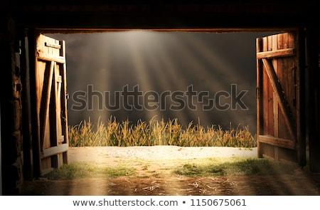 Eski ahır ahşap çim gökyüzü ahşap Stok fotoğraf © njnightsky