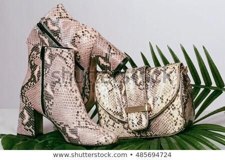 ブラウン ヘビ 革 ハンドバッグ 孤立した 白 ストックフォト © acidgrey