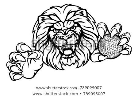 Cartoon leone golf illustrazione giocare golf Foto d'archivio © cthoman
