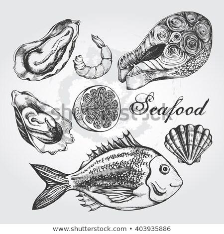 鮭 ステーキ モノクロ 手描き 実例 ベクトル ストックフォト © robuart