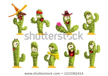 Stock fotó: Szett · aranyos · illusztráció · rajz · kaktusz · érzelem