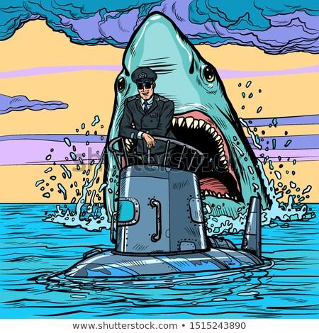 Podwodny rekina atakować pop art retro rysunek Zdjęcia stock © studiostoks