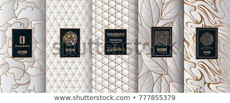 Luxe gouden label vector ontwerp Stockfoto © blue-pen