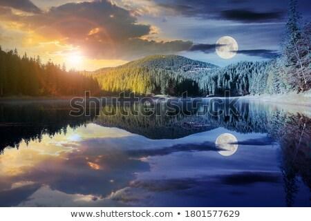 горные · ручей · воды · весны · лес · рок - Сток-фото © fyletto