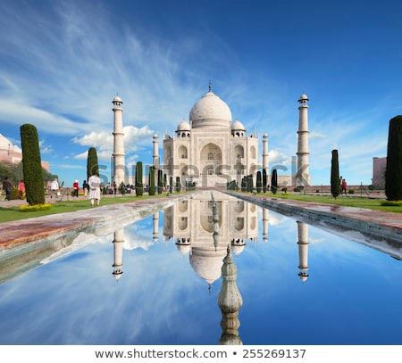 Taj Mahal golden silhouette.  Stock photo © ShustrikS