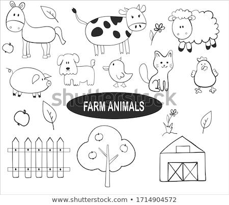 черно белые Cartoon смешные гусь фермы птица Сток-фото © natali_brill