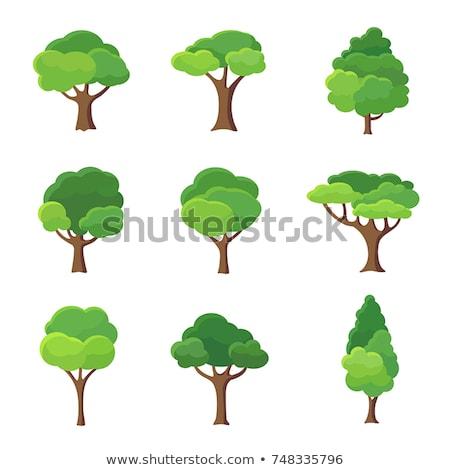 árbol mundo resumen naturaleza mundo tierra Foto stock © Vg