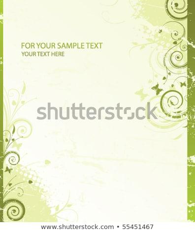 Floral verde rama mariquita forestales naturaleza Foto stock © Artspace