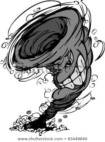 Vihar tornádó kabala vektor rajz kép Stock fotó © chromaco