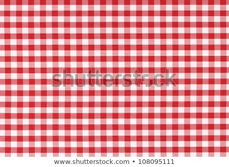 Red picnic table cloth plaid Stock photo © experimental