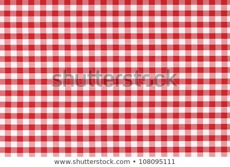 czerwony · biały · obrus · koc · piknikowy · szczegół - zdjęcia stock © experimental