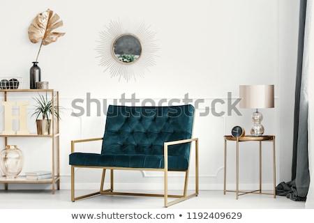 moderne · interieur · gezellig · zwarte · sofa · verlichting - stockfoto © ciklamen