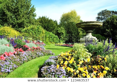 Belle anglais jardin printemps floraison fleurs Photo stock © Julietphotography