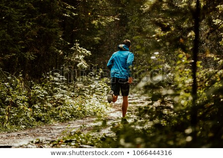 man is jogging in the forest stock photo © juniart