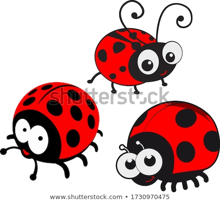 Ladybird isolated on a white background Stock photo © pzaxe