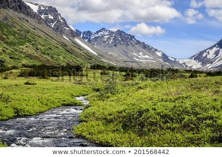 гор Аляска север Америки пейзаж снега Сток-фото © cboswell
